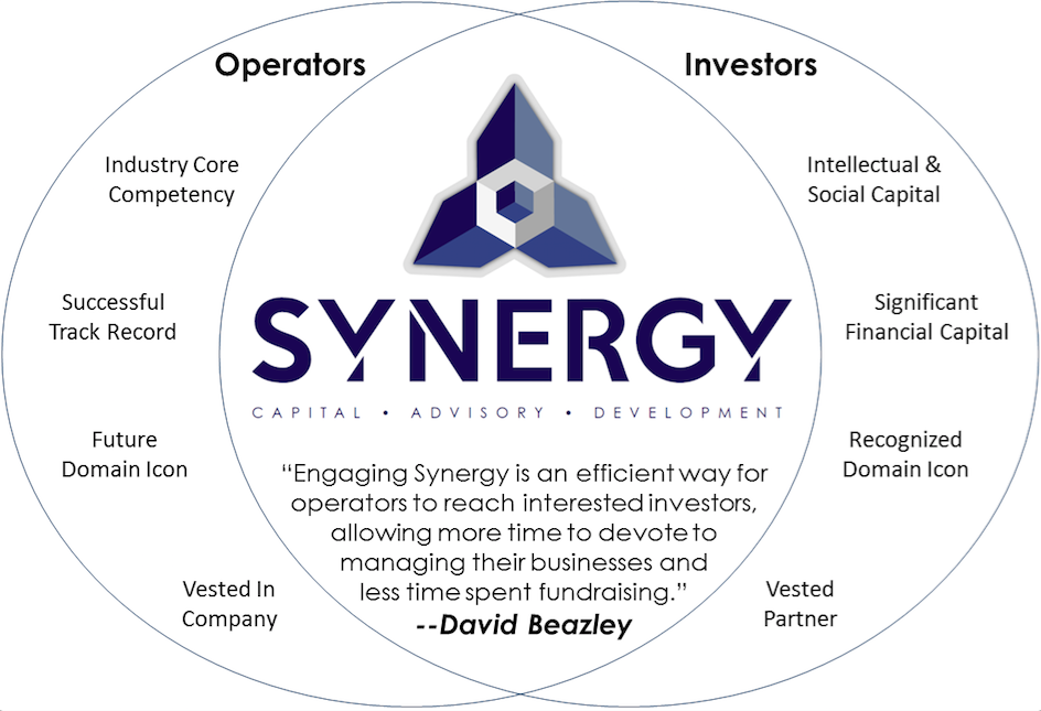 Synergy Financial Infographic